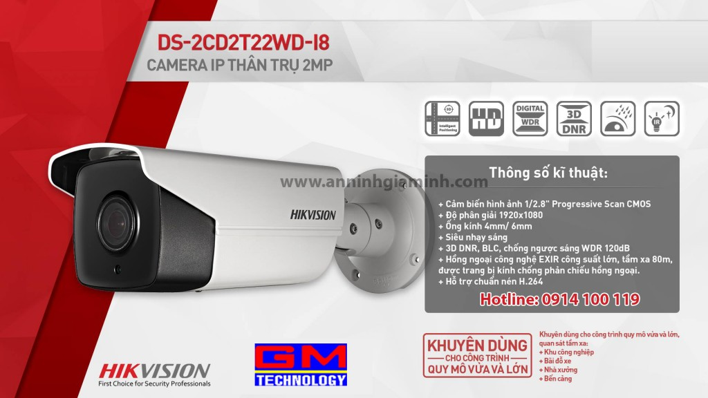 Hikvisison DS-2CD2T22WD-I8
